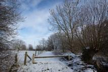 20190123_sneeuw__mg_2350